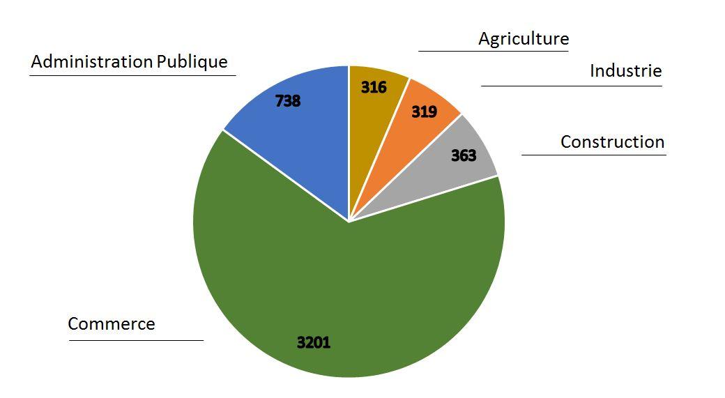 repartition entreprises par secteurs d'activités de Saint-Louis
